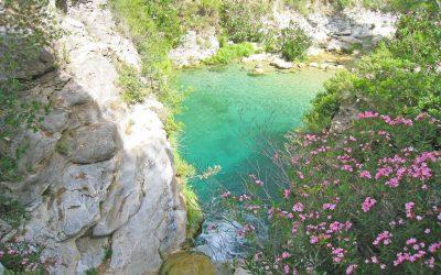 Hike and Swim in Rio Verde